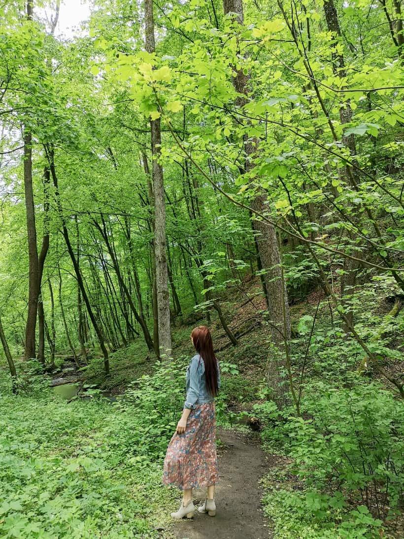 dolina-mnikowska