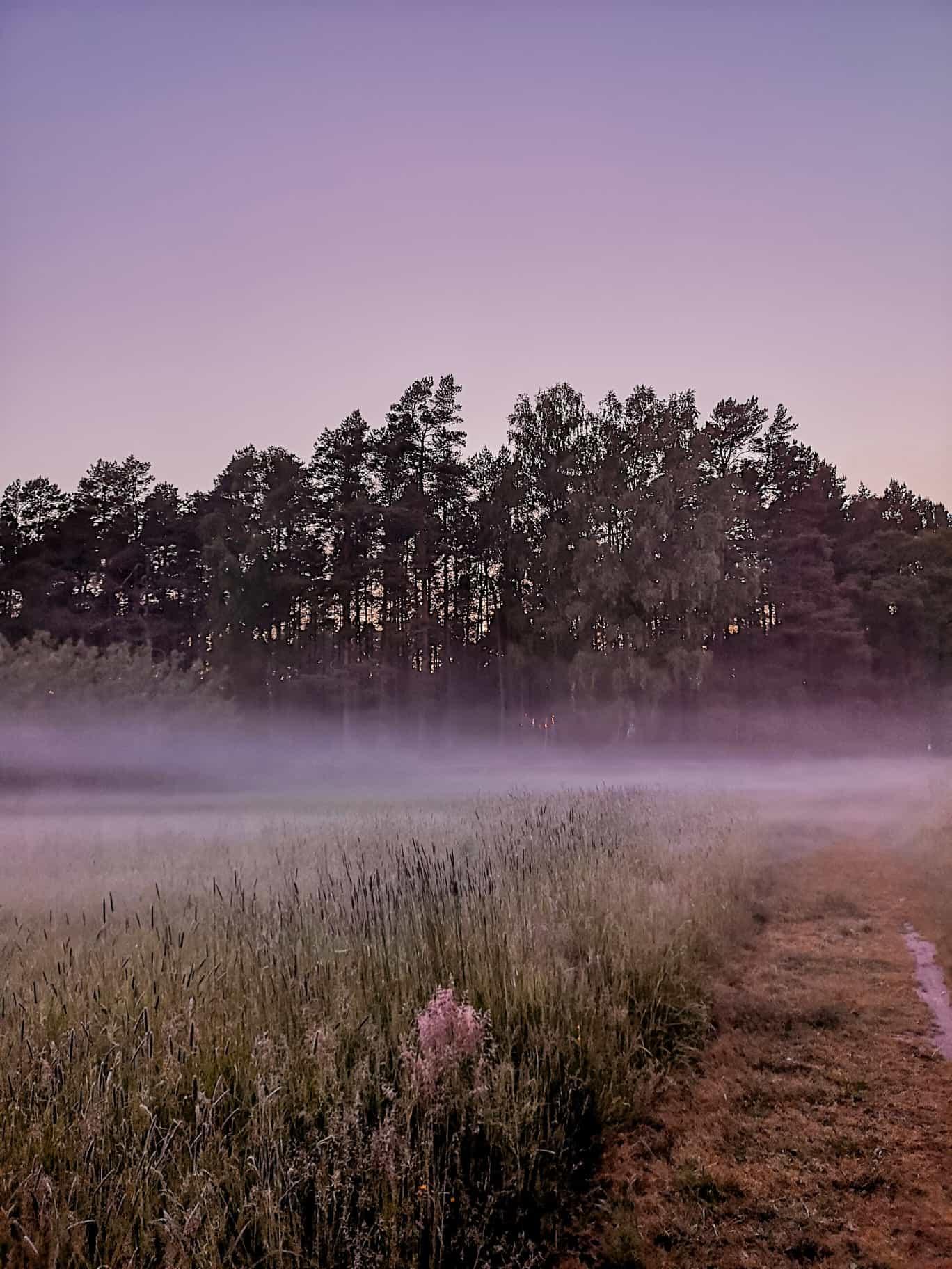 domki-szumilas