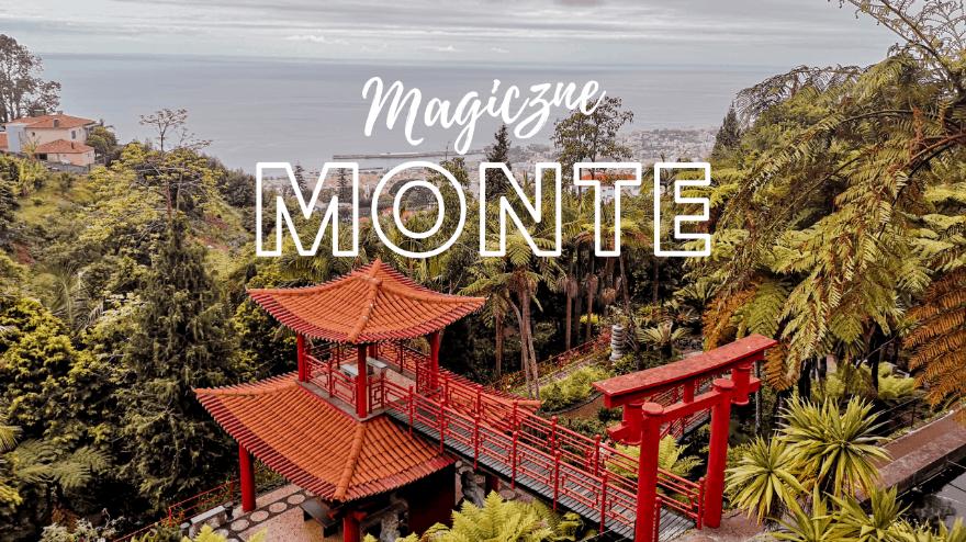 Monte – Ogród tropikalny Monte Palace i zjazd na sankach